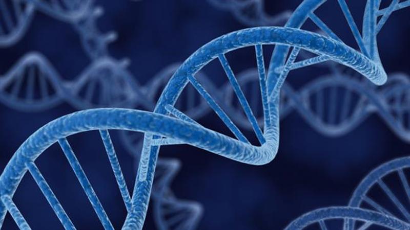 ژن سرطان